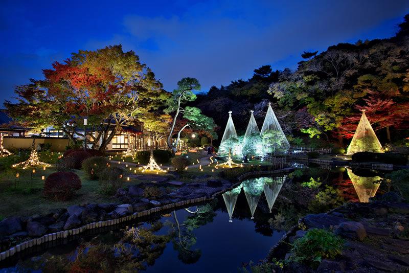 肥後細川庭園 秋の紅葉ライトアップひごあかり