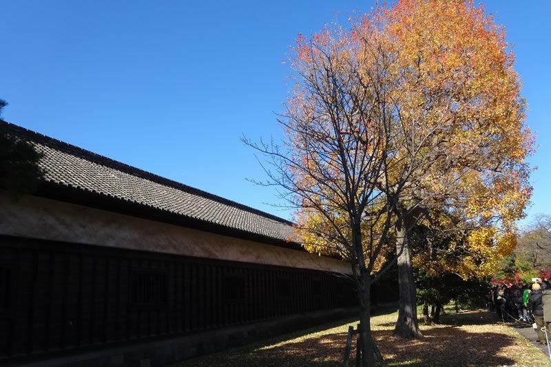 乾通りの秋の一般公開