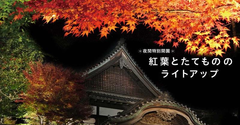 江戸たてもの園 紅葉とたてもののライトアップ