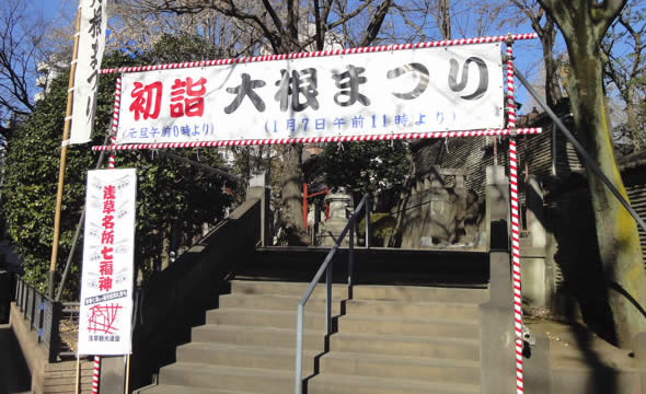 daikon-matsuri