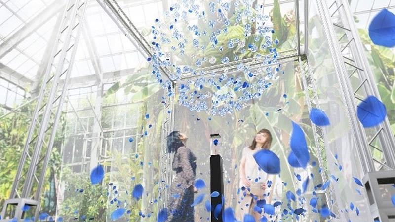 京成バラ園 バラフェア