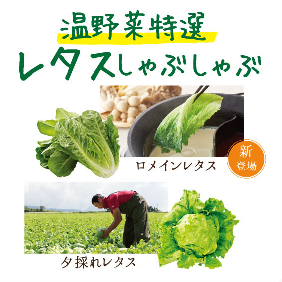 しゃぶしゃぶ温野菜 国産野菜食べ放題