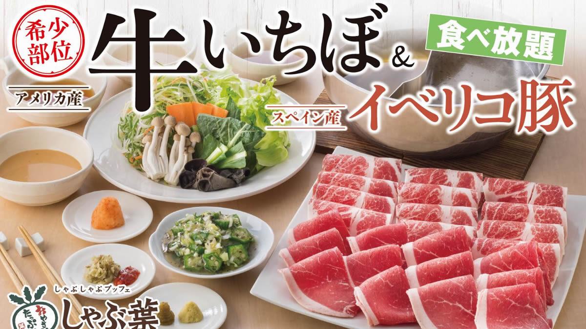 しゃぶ葉「牛いちぼ&イベリコ豚食べ放題」